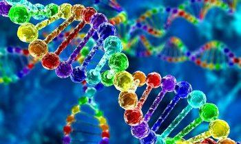 Biyoloji Kısaca Nedir ?