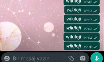 Whatsapp'ta Yazı Tipi Nasıl Değiştirilir?