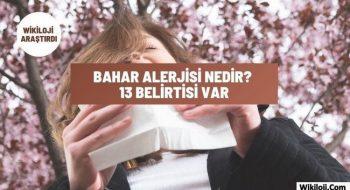 Bahar Alerjisi (Saman Nezlesi) Nedir? 13 Farklı Belirti