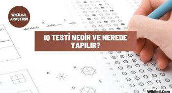 IQ Testi Nedir Ve Nerede Yapılır?