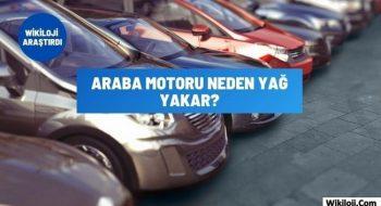 Araba Motoru Neden Yağ Yakar? 8 Farklı Sebep !
