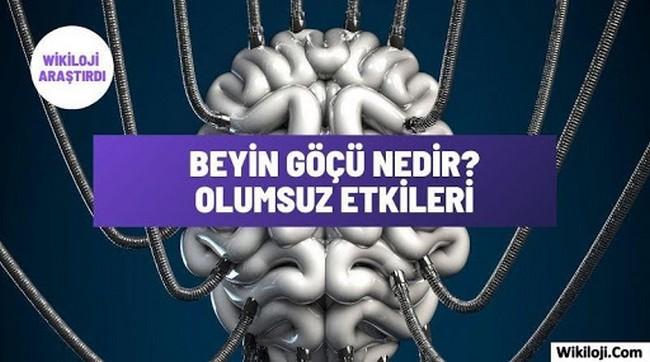 Beyin Göçü Nedir? Beyin Göçünün Sebepleri Nelerdir?