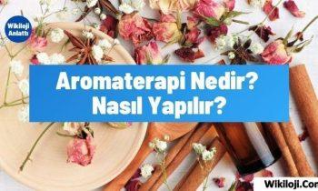 Aromaterapi Nedir? Nasıl Yapılır?